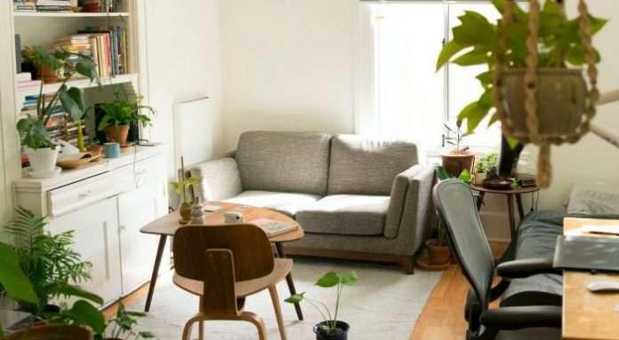 vårdplikt av hyresrätt och bostadsrätt